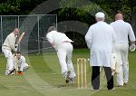 IC_Fraser_Park_Cricket_07.jpg