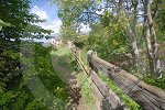 IC_Bridge_Smithton_02.jpg