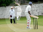 IC_Cricket_Derby_01.jpg