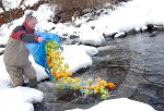 IC_drumnadrochit_duck_race_09.jpg