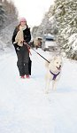 sled_dog_competition_01.JPG