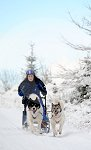 sled_dog_competition_12.JPG
