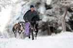 sled_dog_competition_17.JPG