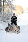 sled_dog_competition_24.JPG
