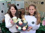 fortrose young enterprise fair 01 .JPG