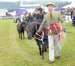 Black Isle Show 2016 Thursday 042.JPG