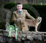 Hunter Macdonald Crufts 06.JPG