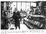 look back metcalfe grocers.jpg