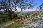 DGB04 - snow on Lowther hills.jpg