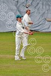 251140LA Lye v Alvechurch cricket.jpg