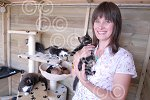 311130M Sue Tranter with kittens that need homes.jpg