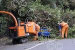 421306L Tree fall Stge Junction.jpg