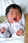010107a NYbaby_Eal (ct) p3.jpg
