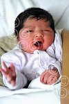 010107a NYbaby_Eal (ct) p4.jpg