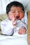 010107a NYbaby_Eal (ct) p5.jpg