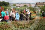 D3214137 Prudhoe Allotment.jpg