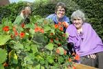 D3214140 Prudhoe Allotment.jpg