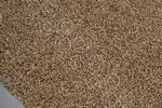Ballicherry-CloseUpGrain.JPG